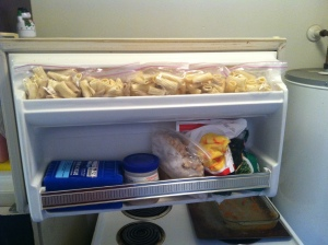Freezer door after